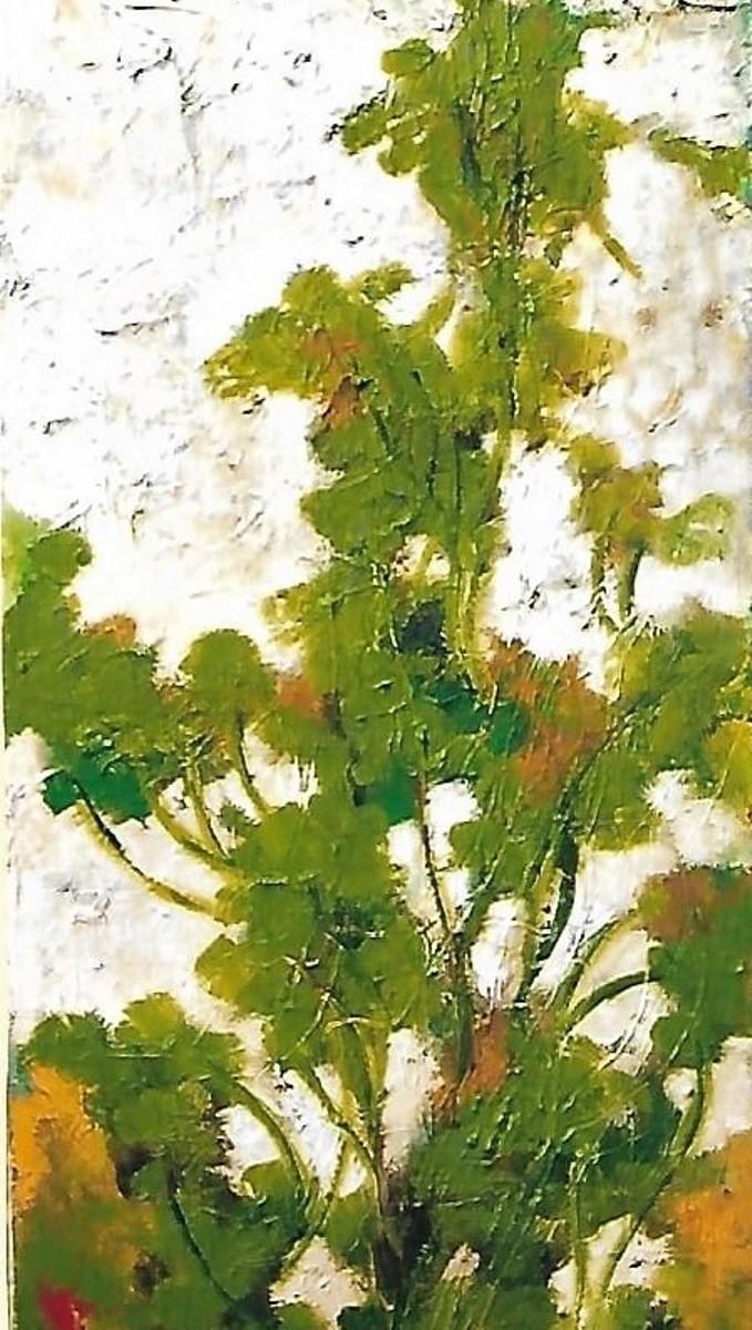 Mario Fanconi - 3-rami in vegetazione