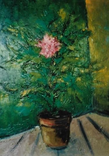 Fiore rosa in vaso